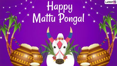Mattu Pongal 2021 Date, Shubh Muhurat & Significance: From Legends to Wishes & Greetings, Know More About the Third Day of Thai Ponga