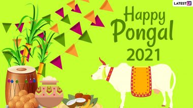 Pongal 2021 Images & HD Wallpapers For Free Download Online: WhatsApp Stickers, Happy Thai Pongal Facebook Messages and Greetings to Celebrate the Festival