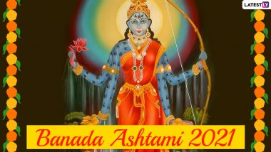 Banada Asthami 2021 Wishes and Goddess Shakambhari HD Images: WhatsApp Messages, Facebook Photos, SMS Greetings to Send on Shakambhari Navratri