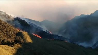 Dzukou Valley Wildfire Latest Updates: Blaze Continues to Rage, 7 NDRF Teams, 3 IAF Helicopters Rushed