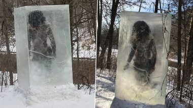 Monolith Level Up? Giant Frozen Caveman Structure Appears in Minneapolis Park, See Pics and Know What's This Mystery?