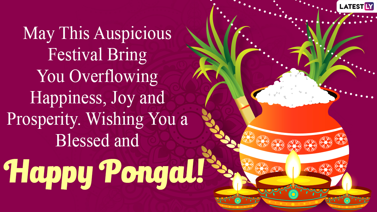 Happy Pongal 2021 Wishes & HD Images ...
