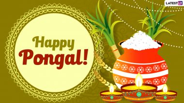Happy Pongal 2021 Wishes & HD Images: WhatsApp Stickers, GIF Greetings, Facebook Messages & SMS to Celebrate Thai Pongal in Tamil Nadu