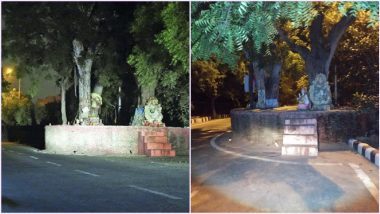 Haunted Story of Delhi's Dwarka Sector 9: This Spooky Tree is Apparently 'Possessed' by a Woman, Know More