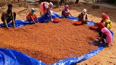 Jharkhand: Forest Produce Becoming Means of Livelihood for Rural Population of State