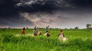 Union Budget 2021 Expectations: Here is What to Expect from the Rural Budget Amid Ongoing Farmers' Unrest