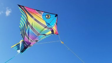 Makar Sankranti 2021 Kite Flying: Which Manja Thread to Use to Fly Kites? Watch DIY Video to Make it At Home and Celebrate Uttarayan