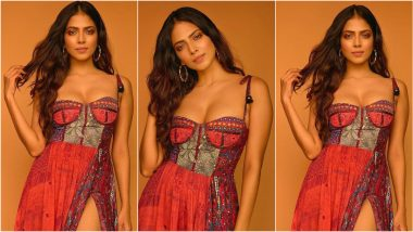 Malavika Mohanan Exudes Bohemian Vibes In A Thigh-High Slit Dress As She Kickstarts 'Master' Promotions (View Pics)