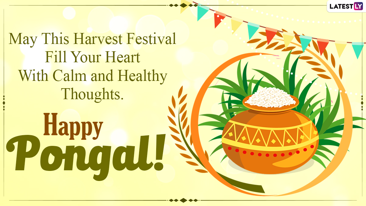 Happy Pongal 2021 Wishes And Wallpapers ...