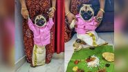 Pawdorable! Pug Donning Malayali Traditional Outfit 'Kalli Mundu' Looking for a Match Online Wins Hearts on the Internet (See Viral Pic)