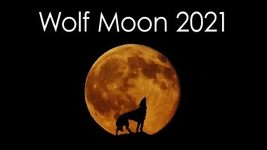 Wolf Moon 2021 Live Streaming: Watch Tonight's Lunar Event Online! Here's How You Can Photograph the First Full Moon of the Year