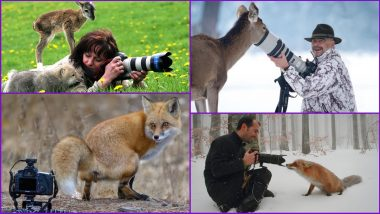 Funniest Wildlife Photos! Twitter Thread of Animals Interrupting Wildlife Photographers is The Perfect Respite From Doomscrolling Online (See Viral Pics)