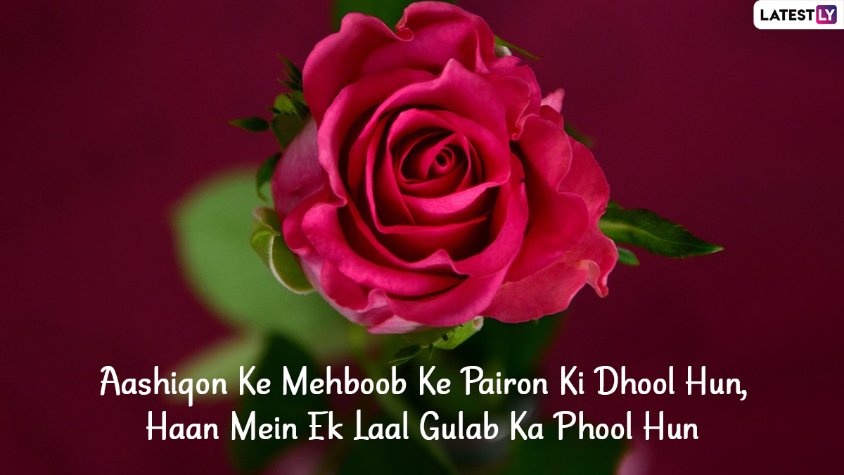 Rose Day 2021 Shayari Images Sms In Hindi For Valentine Week Romantic Messages Whatsapp Status Gif Greetings Quotes And Rose Flower Hd Photos For Husband And Wife Latestly