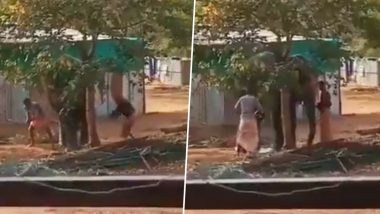 Tamil Nadu: Video of Two Mahouts Beating Temple Elephant at Rejuvenation Camp in Thekkampatti Goes Viral