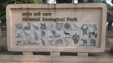 Delhi Zoo to Remain Closed This Weekend After CM Arvind Kejriwal Announces Curfew Amid Rising COVID-19 Cases