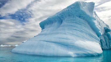 Life in Antarctica! British Scientists Accidentally Found Living Creatures Under 3,000 Feet of Filchner–Ronne Ice Shelf, Watch Video
