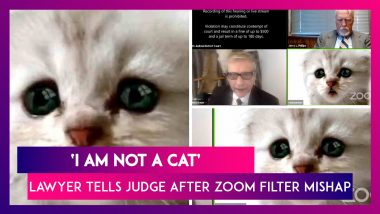 'I Am Not A Cat': Us Lawyer Tells Judge After A Zoom Filter Mishap During Online Court Session