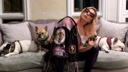 Lady Gaga's Missing Dogs Koji and Gustav Recovered, a Woman Arrives With the French Bulldogs at the LAPD