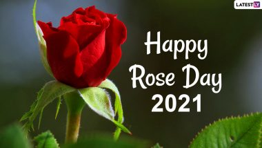 Rose Day Images Hd Wallpapers For Free Download Online Wish Happy Rose Day 2021 With Whatsapp Stickers Gif Greetings Flower Photos And Quotes Latestly