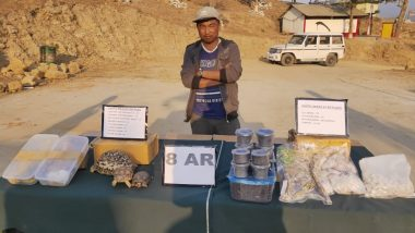 Mizoram: Drugs Worth Rs 7.29 Crore, 80 Exotic Reptiles Seized by BSF
