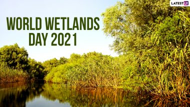 World Wetlands Day 2021 Date and Theme: Know the Significance of Wetlands Providing a Wide Range of Important Ecosystem Services