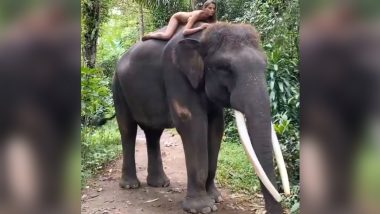Alesya Kafelnikova, Russian Instagram Influencer Poses Naked on an Endangered Sumatran Elephant in Bali, Sparks Outrage After Video Goes Viral