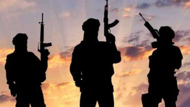 Terrorism in Syria Increasing Due to External Actors: India at UN