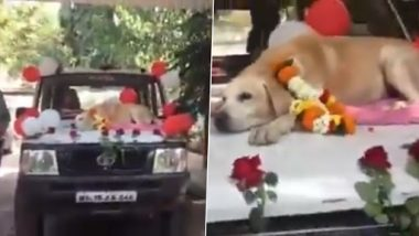 Sniffer Dog Spike of Nashik Police, Receives Grand Farewell After 11 Years of Service (Watch Video)