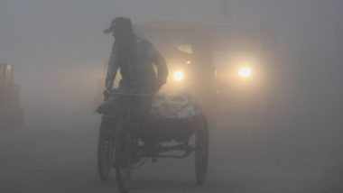 Delhi Winters: Dense Fog Engulfs Parts of National Capital Leading to Low Visibility, Delhiites Experience Chilly Morning