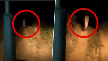 Real Ghost Caught on Camera? Paranormal Encounter of Odisha Villagers With Eerie Figure in White Saree Is Giving Nightmares! Viral Video Will Spook You Out