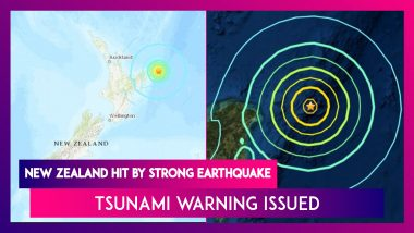 New Zealand Hit By 8.1  Magnitude Strong Earthquake, Tsunami Warning Issued For Land And Marine Areas
