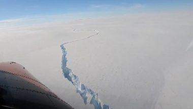 Giant Antarctic Iceberg, Double the Size of Mumbai, Breaks Off Ice Shelf, Watch Viral Video