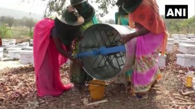 Chhattisgarh Horticulture Department Trains Women Self Help Groups in Beekeeping