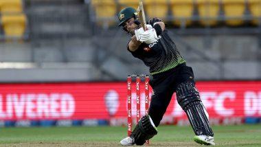 RCB Fans Elated As Glenn Maxwell Scores Quick-Fire Half-Century in New Zealand vs Australia 3rd T20I 2021