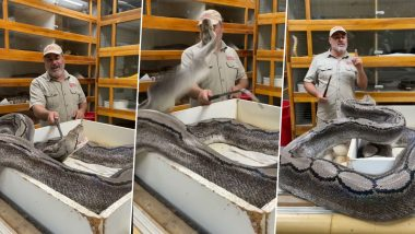 Massive Snake Attacks Reptile Zoo Founder Jay Brewer (Watch Shocking Video)