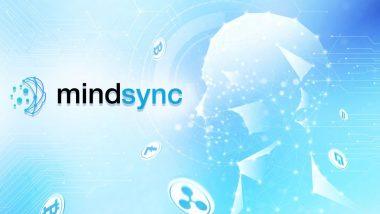 Mindsync – Bringing the Best Minds Together