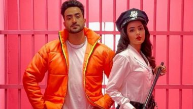 Jasmin Bhasin and Aly Goni To Feature in Five Music Videos After Tera Suit Song Success (Watch Video)