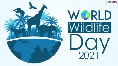 World Wildlife Day 2021: From David Attenborough's 'A Life on Our Planet' to 'Chasing Coral', Eye-Opening Environmental Documentaries to Binge-Watch