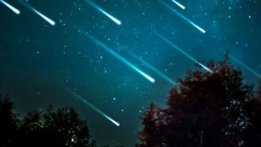 Lyrids Meteor Shower 2021 Dates: How and When to Watch the Shooting Stars? All You Need to Know About the Celestial Event