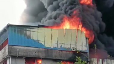 Maharashtra Fire: Blaze Erupts at Plastic Factory in Thane's Asangaon Area; 12 Fire Engines on Spot