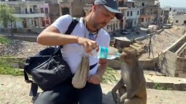 Adorable Video of Man Helping Thirsty Monkeys Drink Water From His Bottle Goes Viral