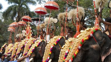 Thrissur Pooram 2021 to Be Held on April 23 Despite a Staggering Spike in COVID-19 Cases! Netizens Go Berserk