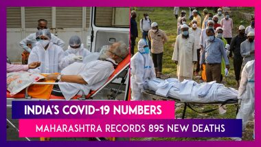 India's Covid-19 Numbers: 3.6 Lakh Cases, 3,293 Deaths In 24 Hours; Maharashtra Records 895 Deaths & 66,358 Cases