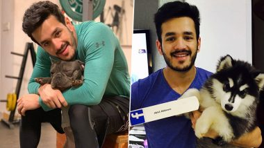 Akhil Akkineni Birthday: 5 Pictures of the Star That Are All About His Love for His Dogs (View Pics)