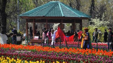 Tulip Festival 2021: Jammu and Kashmir's Tulip Garden Reverberates With Music As Six-Day Festival Begins