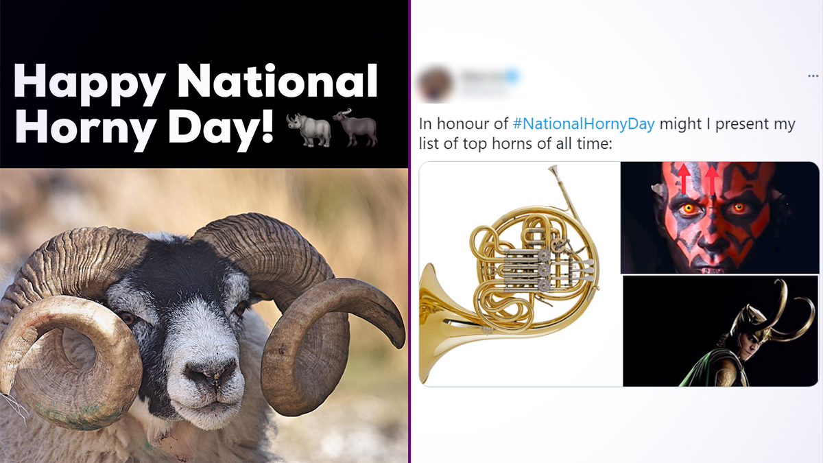 National Horny Day 2021 Funny Memes And Jokes Porn Or Onlyfans Nah Go For These Hilariously Nsfw Posts To Let The Endorphins Flow Amid The Pandemic Morning Tidings