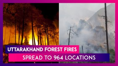 Uttarakhand: Forest Fires Spread To 964 Locations, Helicopters Rushed For Firefighting Operations, All You Need To Know