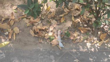 Delhi: Suspicious Object Found Outside National Media Centre Near Raisina Road Was Plastic Toy, No Explosive