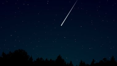 Lyrid Meteor Shower 2021 Is Active! Where to See a 'Fireball' This Week? Everything You Should Know About the Spring Shooting Stars