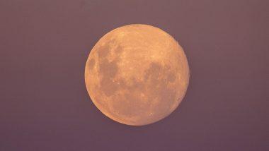 Pink Super Moon 2021 Pics Mesmerise Netizens as the Sprouting Grass Moon Rises over Bondi Beach in Sydney, Australia